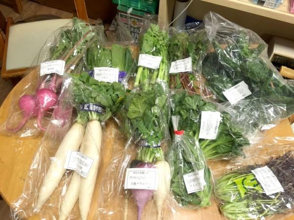 お取り寄せした・鎌倉野菜